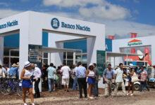 El Banco Nación lanzó créditos por $ 10 mil millones para el «engorde» de ganado, con tasa bonificada por el Ministerio de Agricultura